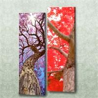 Dekorjinal 2 Li Dikdörtgen Kanvas Tablo Seti Sel090