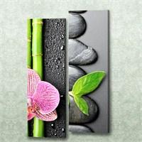 Dekorjinal 2 Li Dikdörtgen Kanvas Tablo Seti Sel096