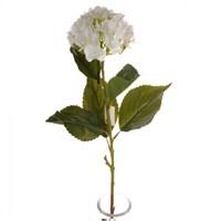 Yedifil Ortanca Yapay Çiçek Beyaz 1 Alana 1 Bedava