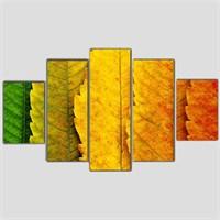 Renkli Yapraklar - 5 Parçalı Kanvas Tablo - 133X75 Cm