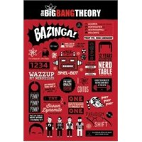Maxi Poster The Big Bang Theory Infographic