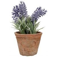 House2home Antik Koleksiyon -Terracota Saksılı Yapay Çiçek