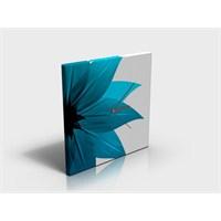 Arte80 - Rui - Kanvas Tablo Saat