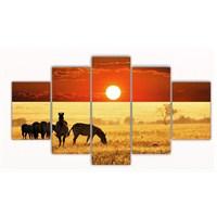Tictac Safari - 5 Parçalı Kanvas Tablo - Büyük Boy