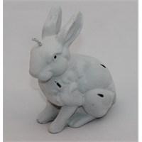 Kankashop Mum Tavşan