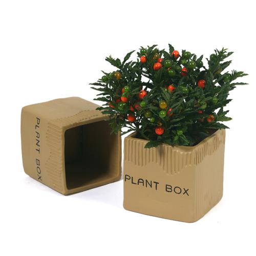 I Love Home Plant Box Saksı Seramik Orta ( 1 adet )