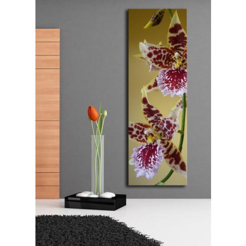 TabloModern Pembe Çiçekler Kanvas Tablo 30x90 cm