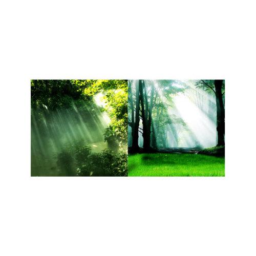 ARTİKEL Reflection 2 Parça Kanvas Tablo 80x40 cm KS-456