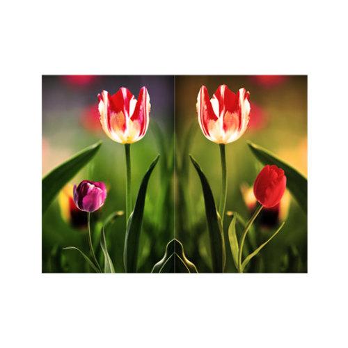ARTİKEL Cool Beauty 2 Parça Kanvas Tablo 80x100 cm KS-363