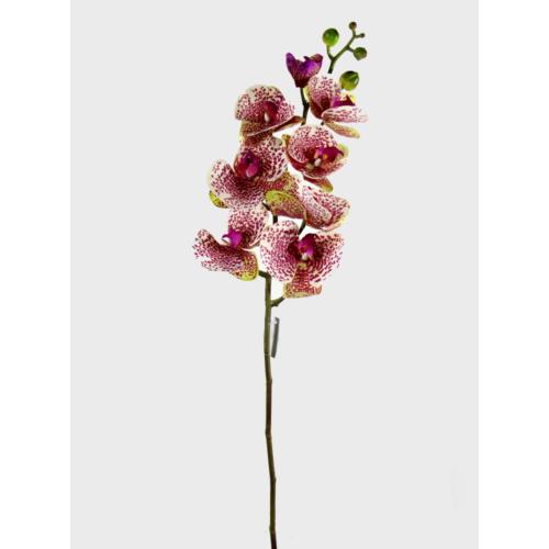 Desen Home Yapay Jumbo Phalaenopsis Orkide Gerçek Dokunuş Pembe Benekli 100 cm