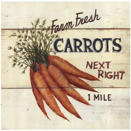 Fotocron Dekoratif Tablo Carrots