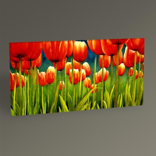 Tablo360 Kırmızı Laleler Tablo 60 x 30