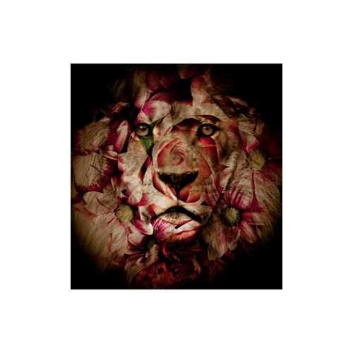 Zoodesignstudio Kanvas Tablo Mavi - 50X70