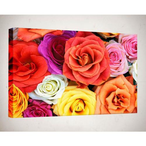 Kanvas Tablo - Çiçek Resimleri - C270