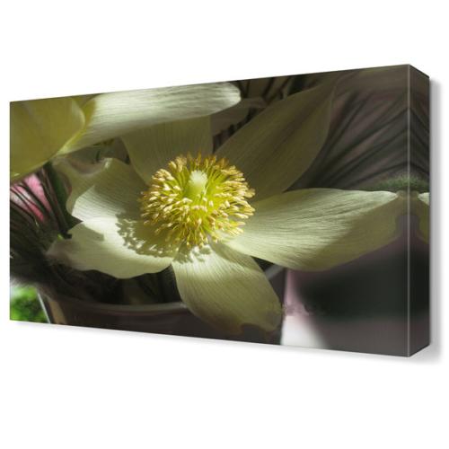 Dekor Sevgisi Beyaz Yapraklı Çiçek Tablosu 45x30 cm