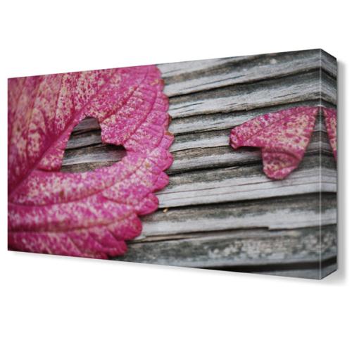 Dekor Sevgisi Pembe Kalp Yaprak Tablosu 45x30 cm