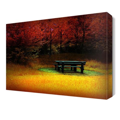 Dekor Sevgisi Ağaçlar Arasındaki Bank Canvas Tablo 45x30 cm