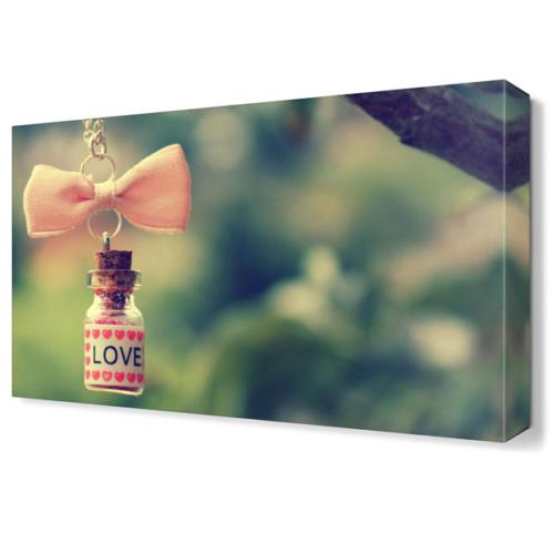Dekor Sevgisi Aşk İksiri Tablosu 45x30 cm