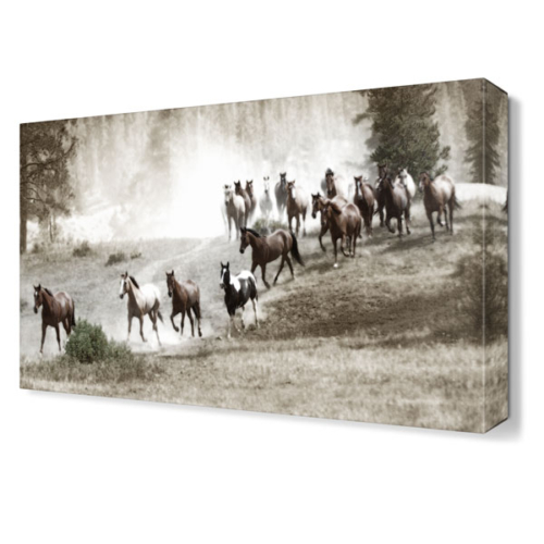 Dekor Sevgisi At Sürüsü Tablosu 45x30 cm