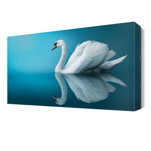 Dekor Sevgisi Güzel Tablosu 45x30 cm