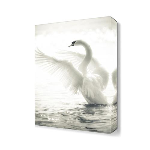 Dekor Sevgisi Kanatlarını Açan Kuğu Tablosu 45x30 cm