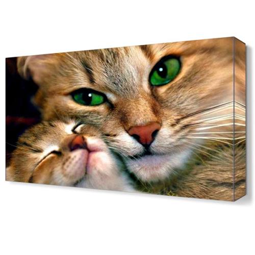 Dekor Sevgisi Anne Kedi ve Yavrusu Canvas Tablo 45x30 cm