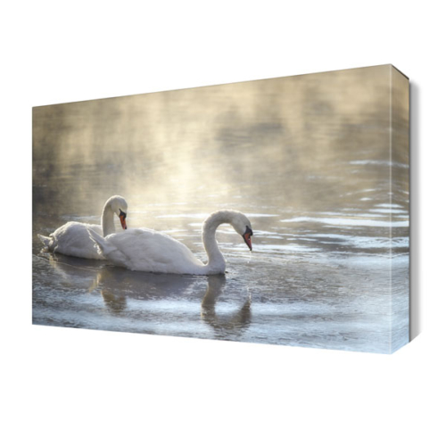 Dekor Sevgisi Yıkanan Kuğular Tablosu 45x30 cm