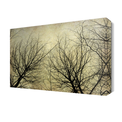 Dekor Sevgisi Yapraksız Ağaçlar Tablosu 45x30 cm