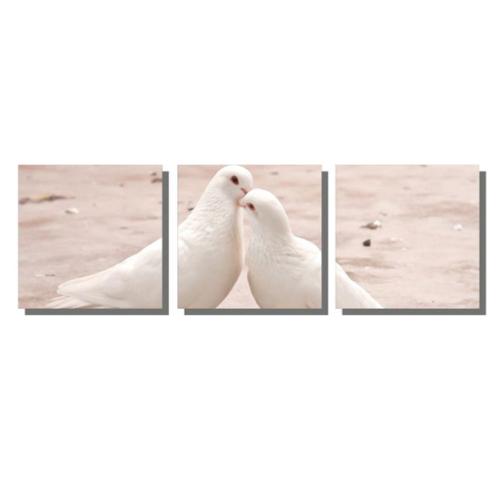 Dekor Sevgisi Sevimli Beyaz Güvercinler Tablosu 40x128 cm