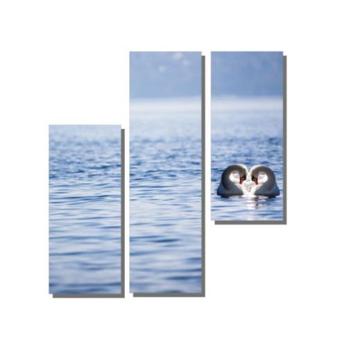 Dekor Sevgisi Kuğular ve Deniz Manzara Tablosu 100x100 cm