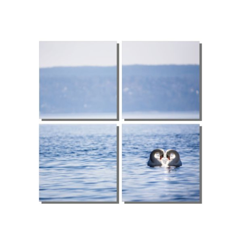 Dekor Sevgisi Denizdeki Kuğular Tablosu 85x85 cm