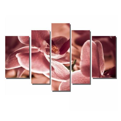 Dekor Sevgisi Pembe Çiçek 2 84x135 cm