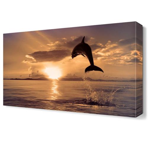 Dekor Sevgisi Atlayan Yunus Canvas Tablo 45x30 cm