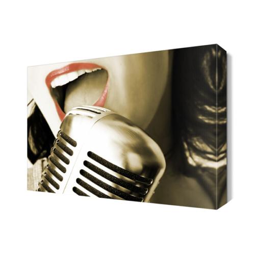 Dekor Sevgisi Şarkı Söyleyen Kız Tablosu 45x30 cm