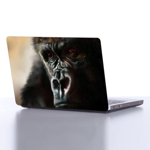 Decor Desing Laptop Sticker Dlp068