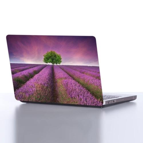 Decor Desing Laptop Sticker Dlp099