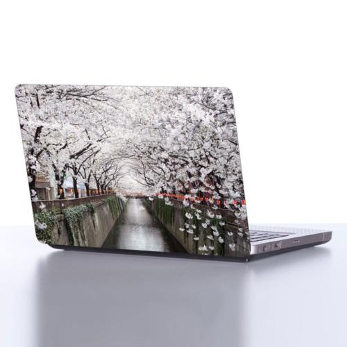 Decor Desing Laptop Sticker Dlp168