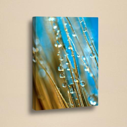 Decor Desing 50 X 70 Cm Kanvas Tablo Zey050