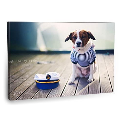 Fotografyabaskı Köpek Tablosu 1 75 Cm X 50 Cm Kanvas Tablo Baskı
