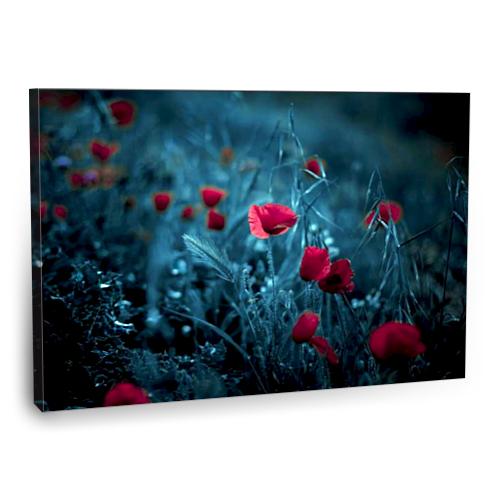 Fotografyabaskı Kırmızı Çiçekler Tablo 75 Cm X 50 Cm Kanvas Tablo Baskı