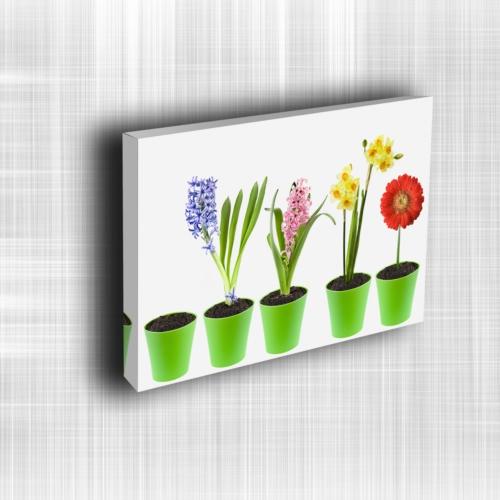Doku Canvas Baskı Çiçek- CIGE595