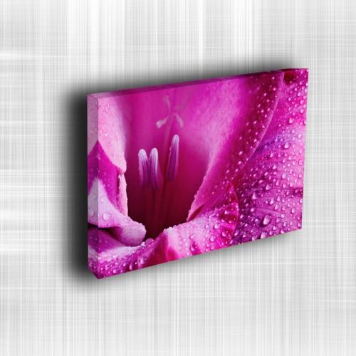 Doku Canvas Baskı Çiçek- CIGE542