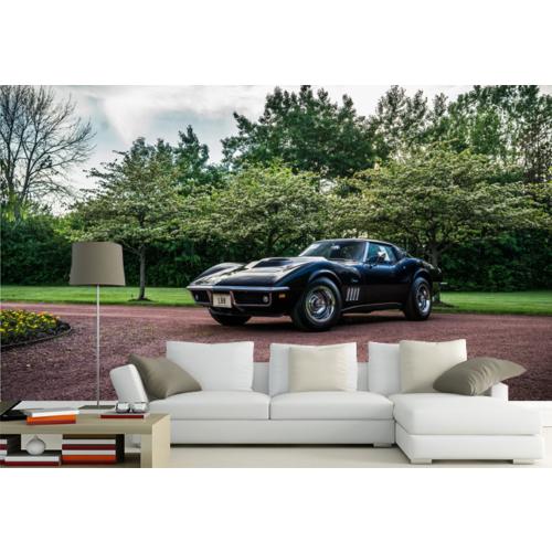 Corvette 001 Duvar Sticker 350x250cm