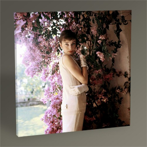 Tablo 360 Audrey Hepburn Tablo 30X30