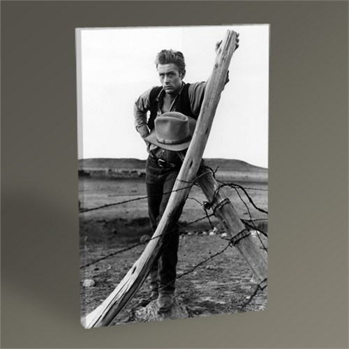 Tablo 360 James Dean Tablo 45X30
