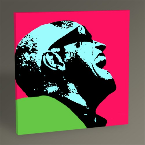 Tablo 360 Ray Charles Tablo 30X30