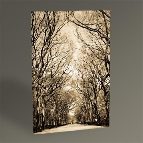 Tablo 360 Ağaçlı Yol Tablo 45X30
