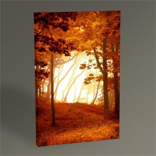 Tablo 360 Ormanda Gün Batımı Tablo 45X30