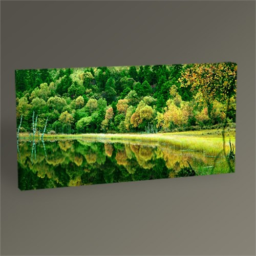 Tablo 360 Forest And İts Shadow Tablo 60X30