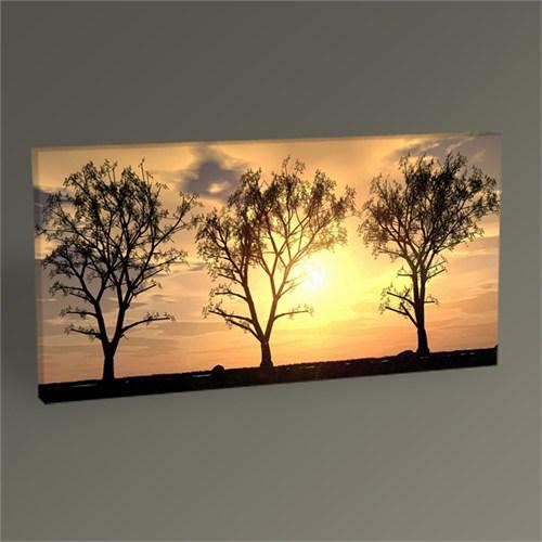 Tablo 360 Sunset Behind The Trees Tablo 60X30